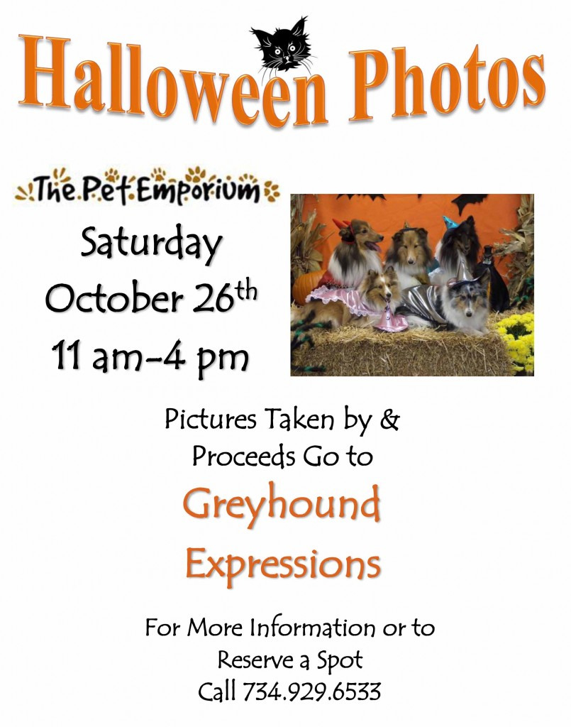 halloween-photos-handbill-2019-tpe